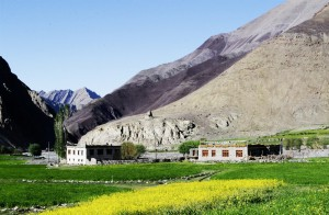 Homestays in rural Ladakh