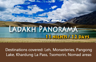 Ladakh panorama tour package